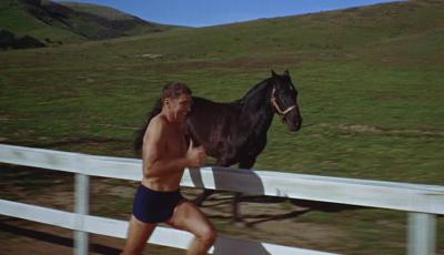 Burt Lancaster vs Horse
